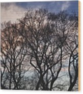 Sunset And Early Evening Nyc Wood Print
