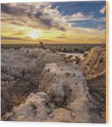 Sunset Over Walls Of China In Mungo National Park, Australia Wood Print