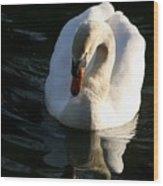 Swan Lake Story Wood Print