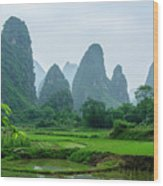 The Beautiful Karst Rural Scenery In Spring Wood Print