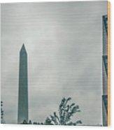 Washington Monument Towers Above Washington Dc Near Smithsonian  Wood Print
