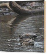 Waterfowl Wood Print