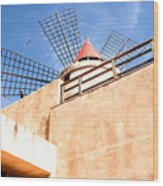 Windmill - Trapani Salt Flats Wood Print