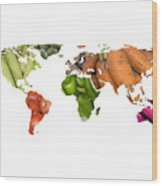World Fruits Vegetables Map Wood Print