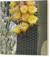 Yellow Cactus Flowers Wood Print