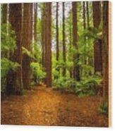 Landscape Drawing Wood Print