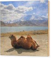 Xinjiang Province China Wood Print