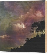 4090 Wood Print