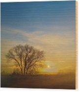 4093 Wood Print