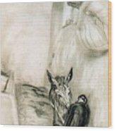 41659 Carlos Saenz De Tejada Wood Print