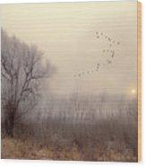 4191 Wood Print