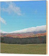 Great Smoky Mountains National Park Wood Print