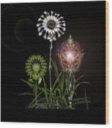 4369 Wood Print