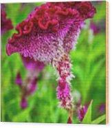 4390- Flower Wood Print