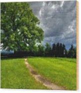 Landscape Print Wood Print