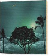 4420 Wood Print
