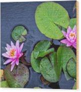 4432- Lily Pads Wood Print