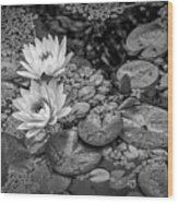 4445- Lily Pads Black And White Wood Print