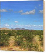 Sonora Desert Wood Print
