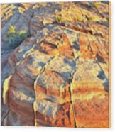 Valley Of Fire Wood Print
