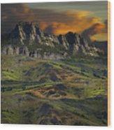 4592 Wood Print