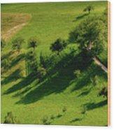 Landscape Wood Print