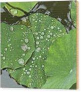 4634- Lilypad Wood Print