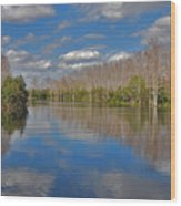 47- Everglades Serenity Wood Print