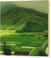 Natural Landscape Wood Print
