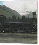 481 In Silverton Wood Print