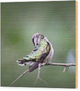 4864-002 - Ruby-throated Hummingbird Wood Print