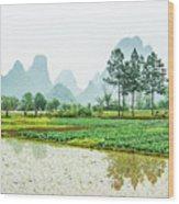 Karst Rural Scenery In Spring Wood Print