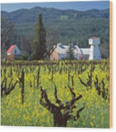 4b6394 Mustard In The Vineyards Wood Print