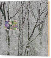 5-14-2015babcdefghijklmnopqrtuvwxyzabc Wood Print