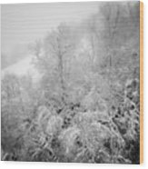 Abstract Scenes At Ski Resort During Snow Storm Wood Print