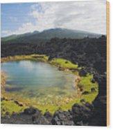 Ahihi Kinau Natural Reserve Wood Print