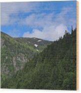 Alaska_00005 Wood Print