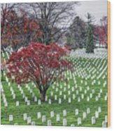 Arlington Cemetery Washington Dc Usa Wood Print