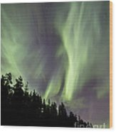 Aurora Borealis Over Trees, Yukon Wood Print