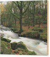 Autumn At Golitha Falls Wood Print