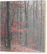 Autumn Forest Wood Print