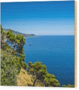 Deep Blue Sea And Golden Beaches Wood Print