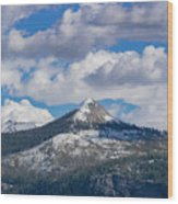 Beauty Of Yosemite Wood Print