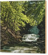 Cascadilla Gorge Falls Wood Print