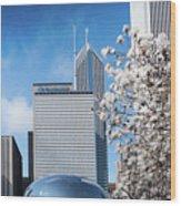 Chicago Bean Millenium Park Wood Print