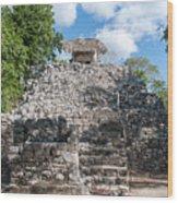 Conjunto Pinturas At The Coba Ruins  Wood Print