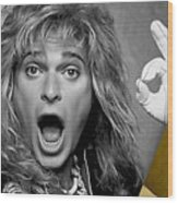 David Lee Roth Collection Wood Print