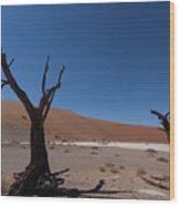 Death Tree Hidden Vlei Wood Print