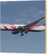 Delta Airlines Boeing 767 Wood Print