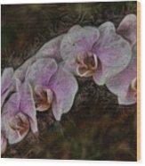 5 Dollar Orchid Wood Print